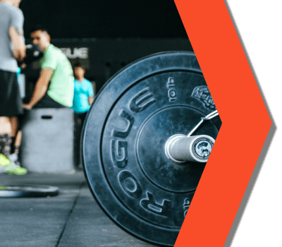 about sarms global